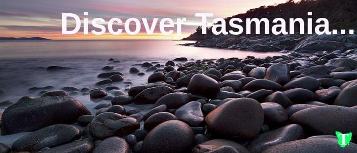 Discover Tasmania Tas Tours Tasmania Australia